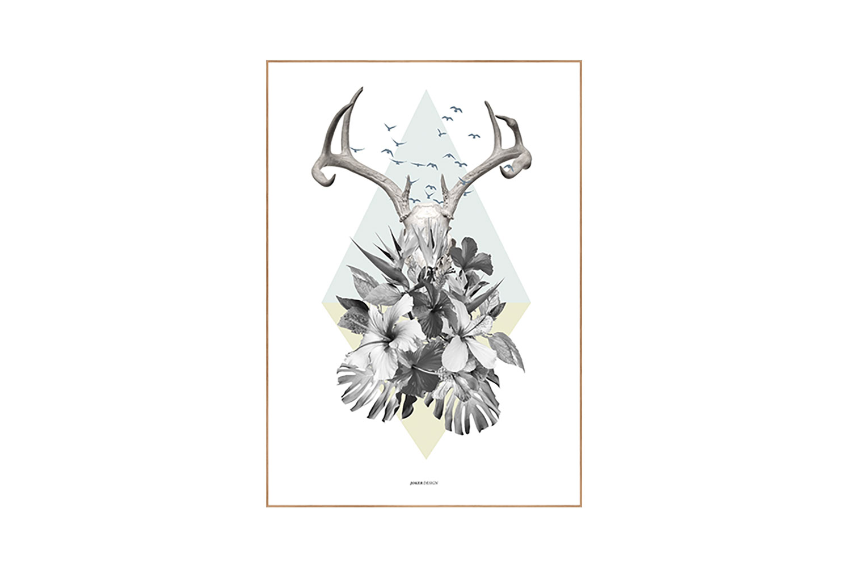 Tropic Deer